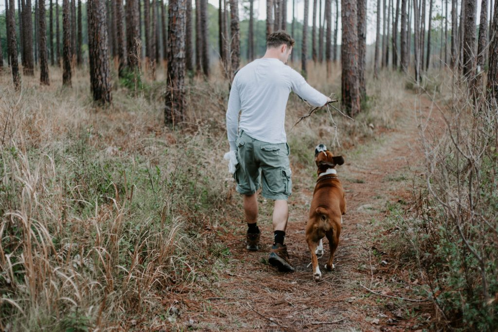 東京の世田谷区と文京区で愛犬と一緒に受講するドッグトレーニングから、犬のしつけのプロトレーナーによる犬を迎え入れる準備のご相談に応じます。犬のしつけハグ