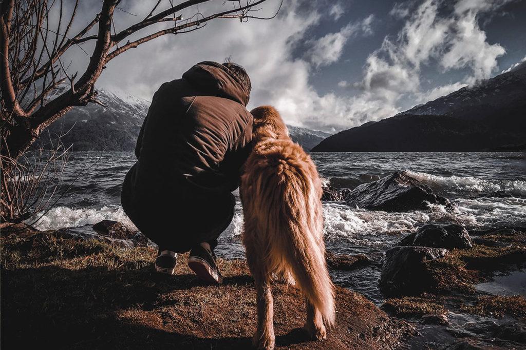 大自然に浸る愛犬と男性の仲良し写真