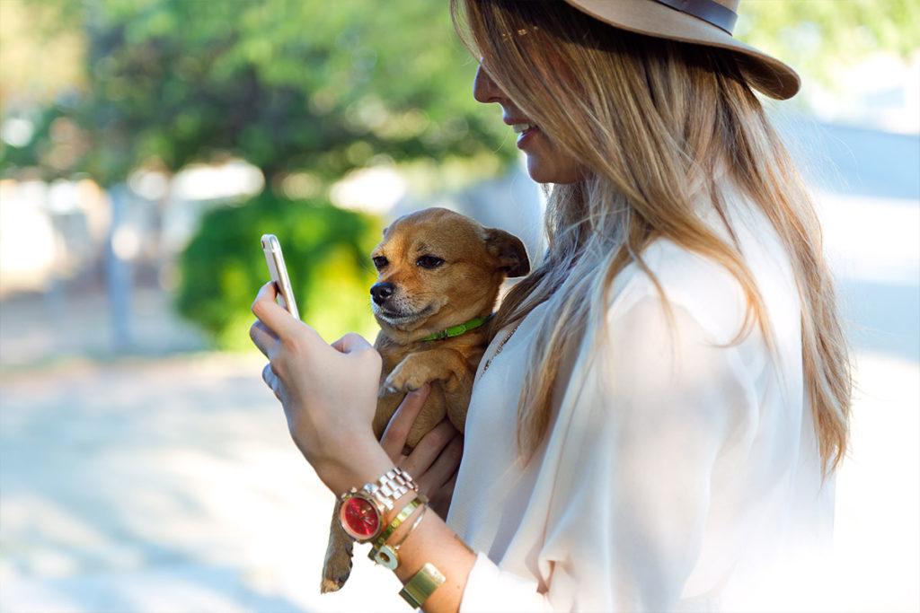 初心者、初めての犬、子犬、ドッグブリーダー友人から譲り受けるなど、動物愛護団体等からの購入方法についてのご相談は東京の世田谷区と文京区のプロドッグトレーナー24時間常駐の犬のしつけハグまで