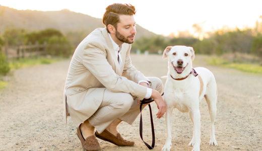 散歩嫌いの犬対策は原因究明から!お散歩が嫌いになる理由とは?