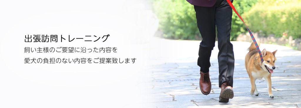 東京の世田谷区と文京区にあるドッグトレーニング犬のしつけ教室です。犬のしつけの専門家として『スッキリ』(日本テレビ系)で電話インタビュー出演のプロトレーナー川島恵によるご自宅までお伺いする出張ドッグトレーニング、犬のしつけサービスです。