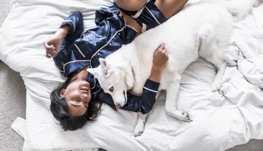犬と一緒の布団で寝てもいいの?