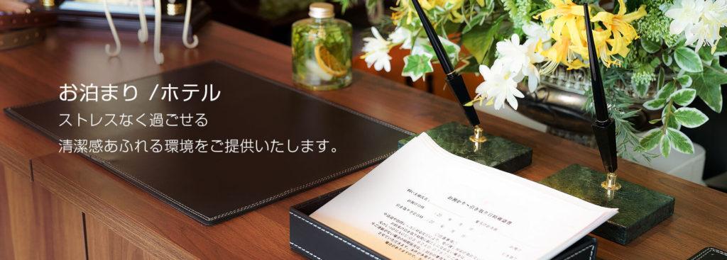 東京の世田谷と文京でドッグトレーニングとプロトレーナーによるドッグトレーニング施設のドックホテルです。日中お預かり8時間で1000円(会員料金)