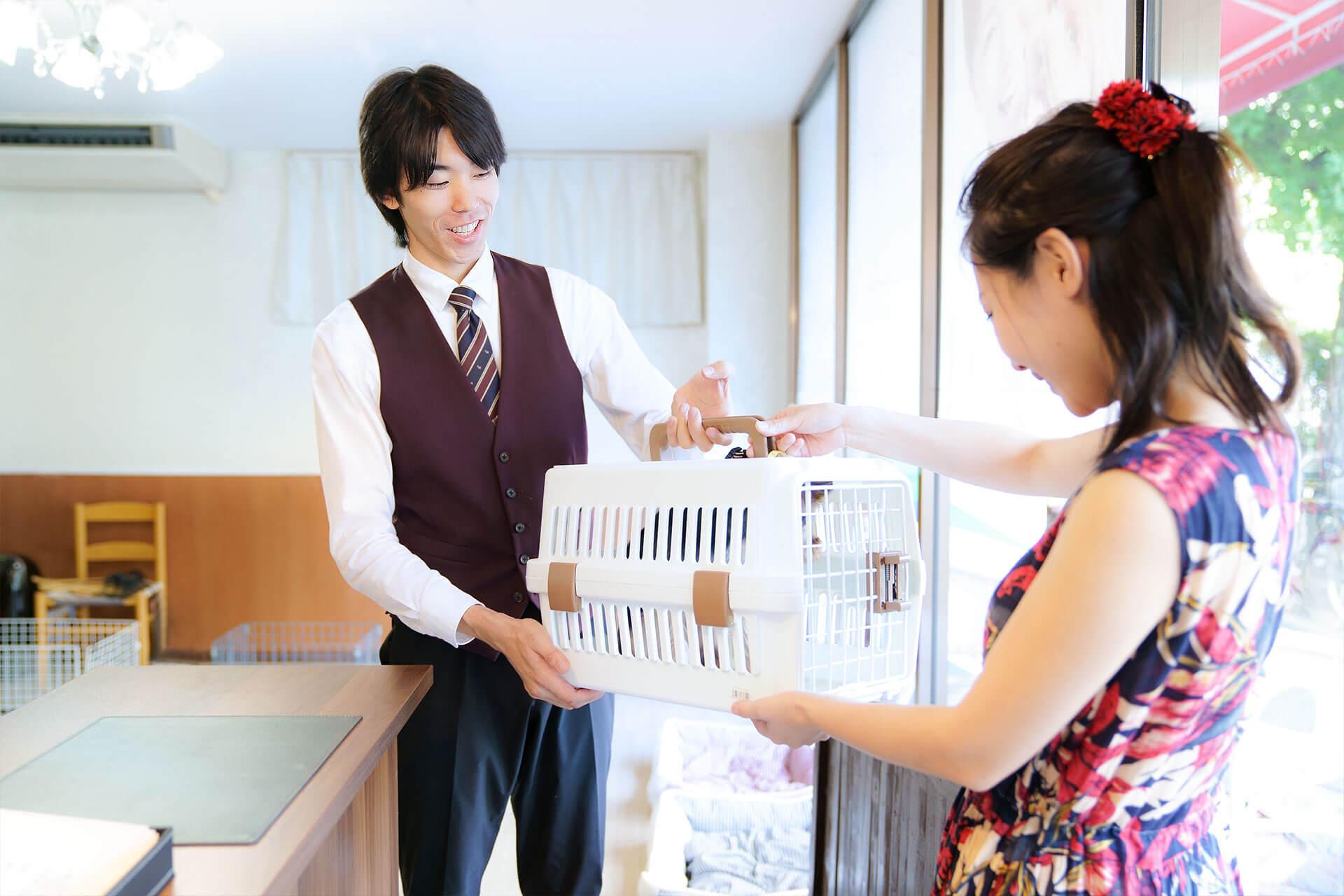吠え、噛む癖、トイレトレーニングは世田谷と文京区にある犬のしつけハグのドッグホテルお受け渡しシーン
