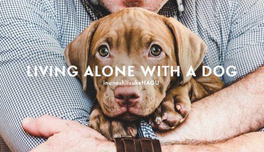 一人暮らしの男性が犬を飼うとモテるって本当?!モテる5つの理由とは?