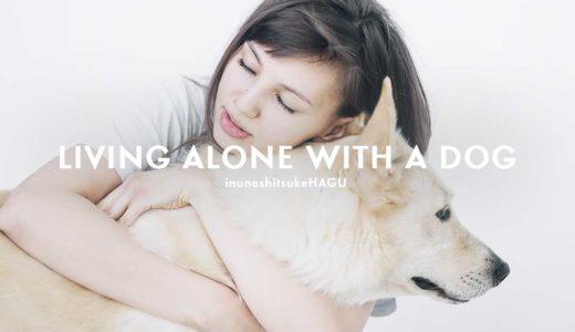 一人暮らしで犬を飼う!メリット・デメリットとは?