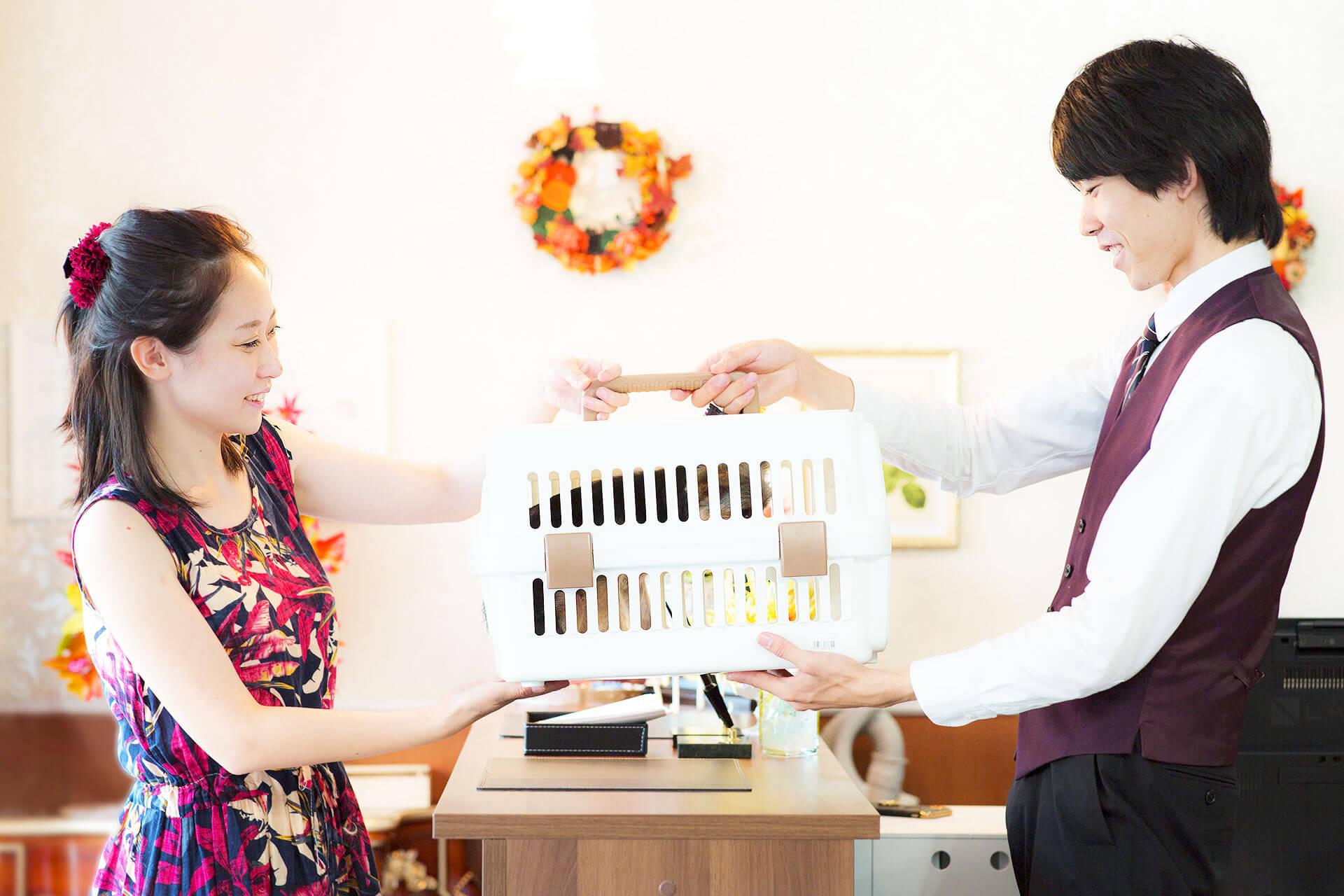 吠え、噛む癖、トイレトレーニングは世田谷と文京区にある犬のしつけハグのワンちゃんのお受け渡し