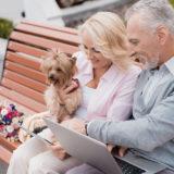 高齢者にお勧めの犬種!飼いやすい犬の特徴とお年寄りが犬を飼うメリットとは?