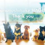 今年は大東京の世田谷区と文京区の犬のしつけ教室犬のしつけハグ変お世話になりました。