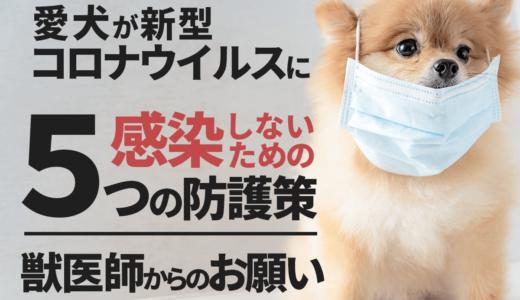 【獣医師監修】愛犬が新型コロナウイルスに感染しないための5つの防護策