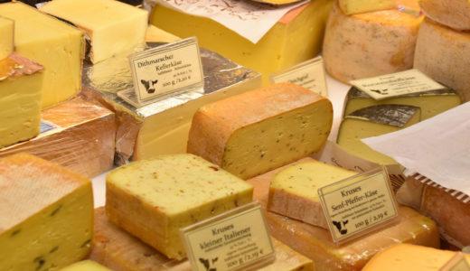 犬にチーズを与えても大丈夫?チーズを与える時の適量と注意点