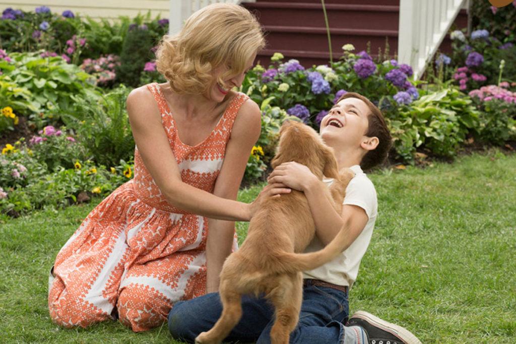 【感動】飼い主のイーサンとその愛犬ベイリーの心温まる物語…『ワンダフル・ライフ』