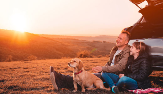 犬とのキャンプ初心者必見!持ち物や注意点を紹介します!