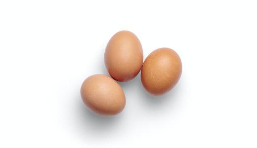 犬に半熟卵やゆで卵を与えてもOKなの?|うずらの卵は?