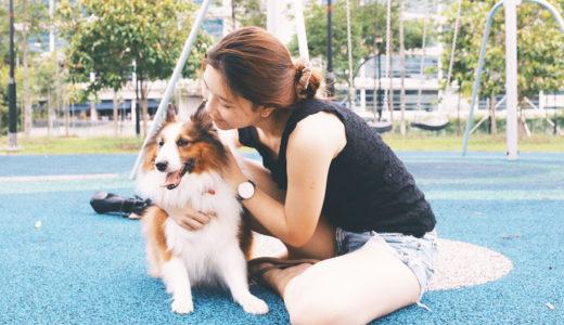 【ドッグトレーナー監修】犬が抱っこから逃げるのは当然!でも対策すれば大丈夫!