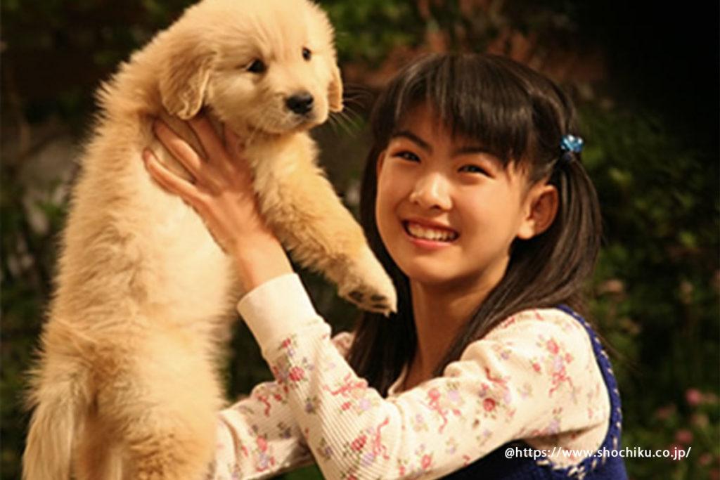 犬 映画『犬と私の10の約束』短編詩「犬の10戒」が元になっている可愛さと感動ストーリー