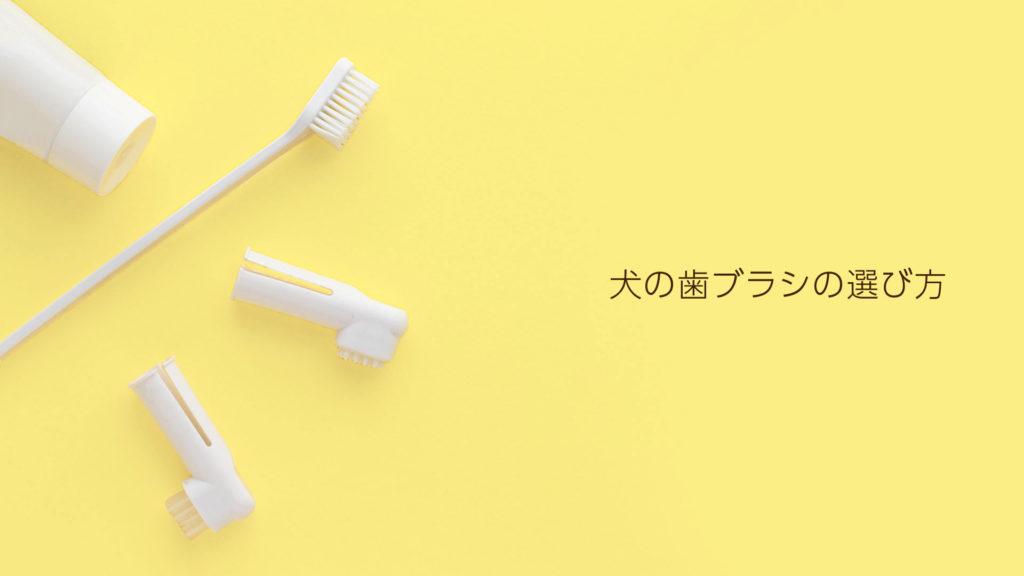 犬の歯ブラシの種類と選び方