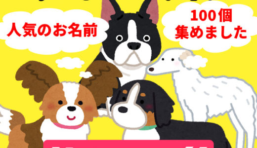 【犬を飼う】迎え入れた最初にやること!愛犬の名前に悩んだら!ペットネームエディター