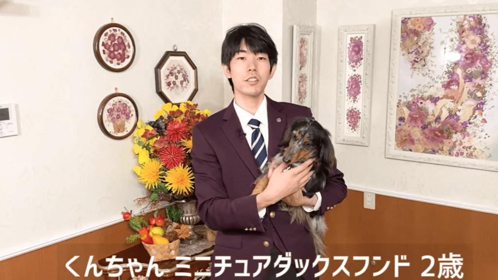 東京都文京区の犬のしつけハグで抱っこされているミニチュアダックスフンドのくんちゃん