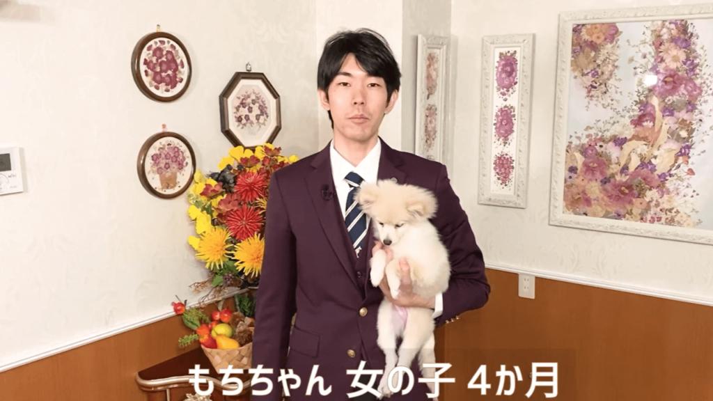 東京都文京区の犬のしつけハグで不安定抱っこをされているもちちゃん