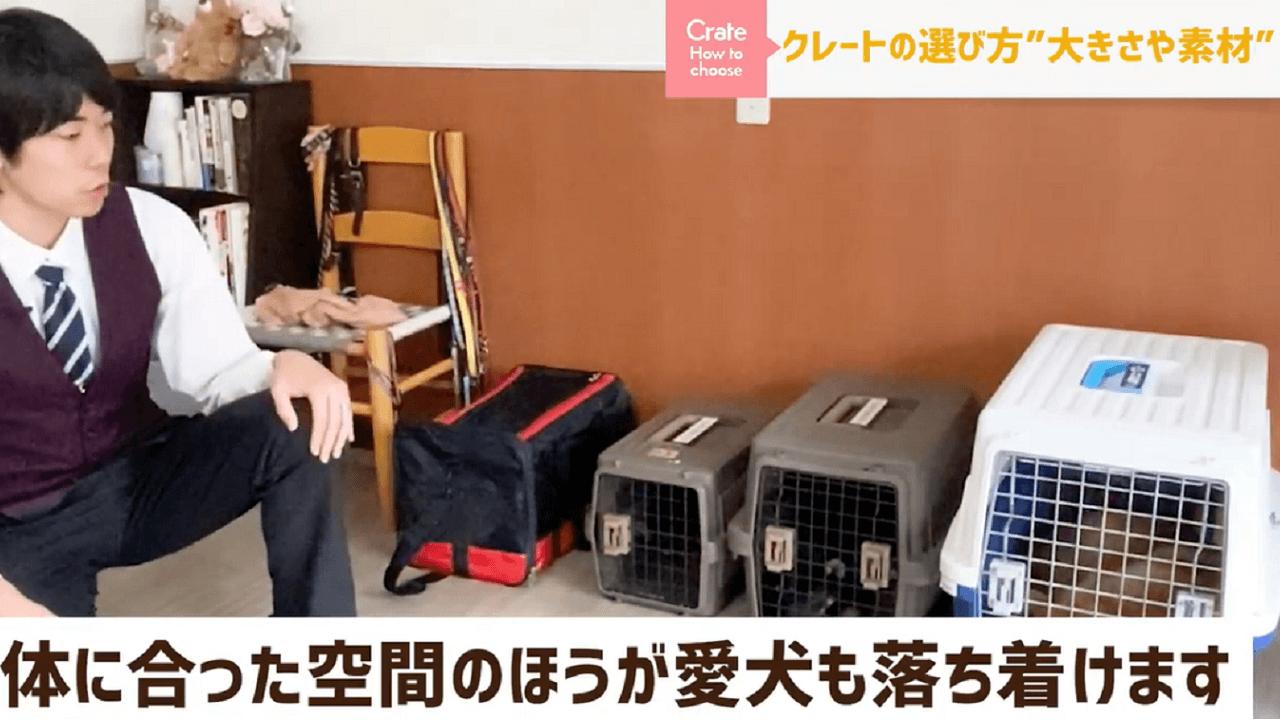 東京都文京区犬のしつけ教室でクレートの説明をするドッグトレーナー