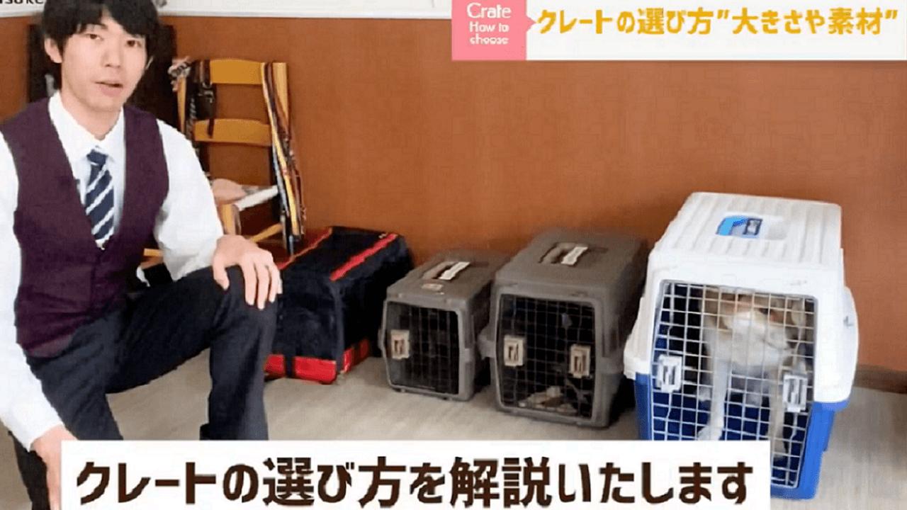 東京都文京区犬のしつけ教室でクレートの選び方を説明するドッグトレーナー