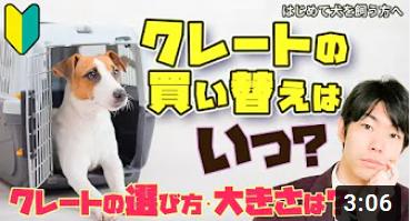 【ドッグトレーナー解説】犬のクレートの正しい選び方!買換えのタイミングはいつ?