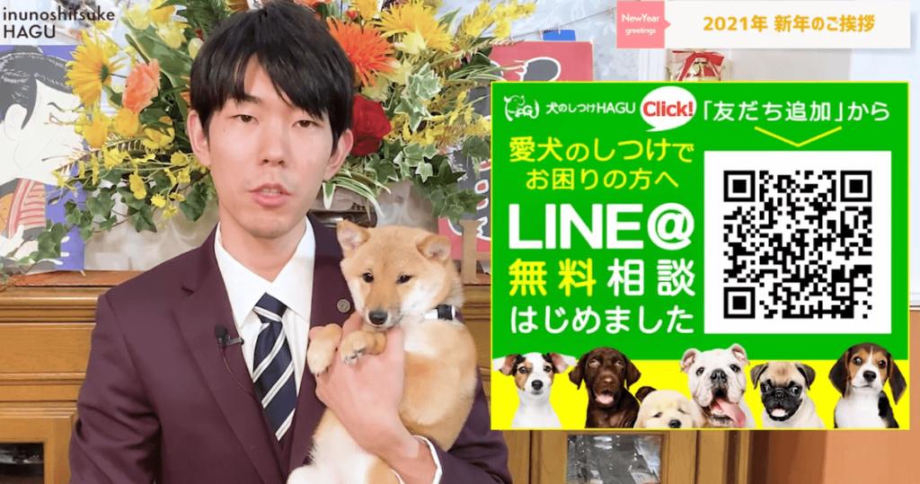 東京都文京区犬のしつけハグにてLINE@無料相談の紹介