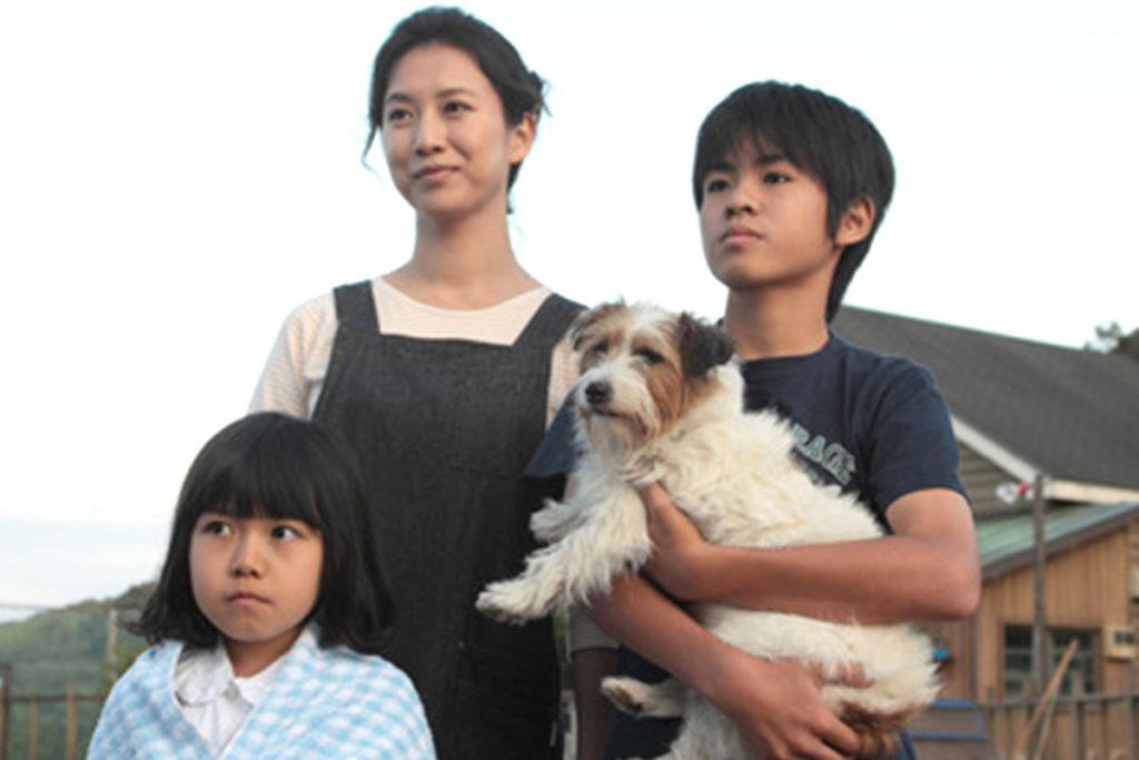 ラブラドールやジャーマンシェパードが活躍『きな子 見習い警察犬の物語 実話』【犬映画】あらすじ