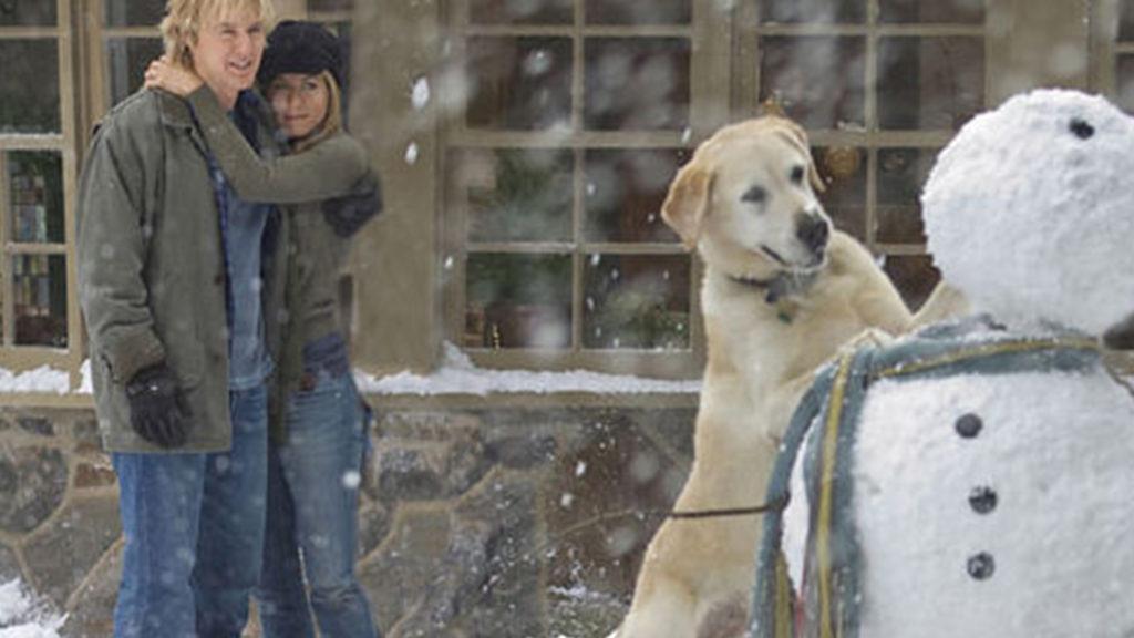 映画 マーリー 世界一おバカな犬が教えてくれたこと