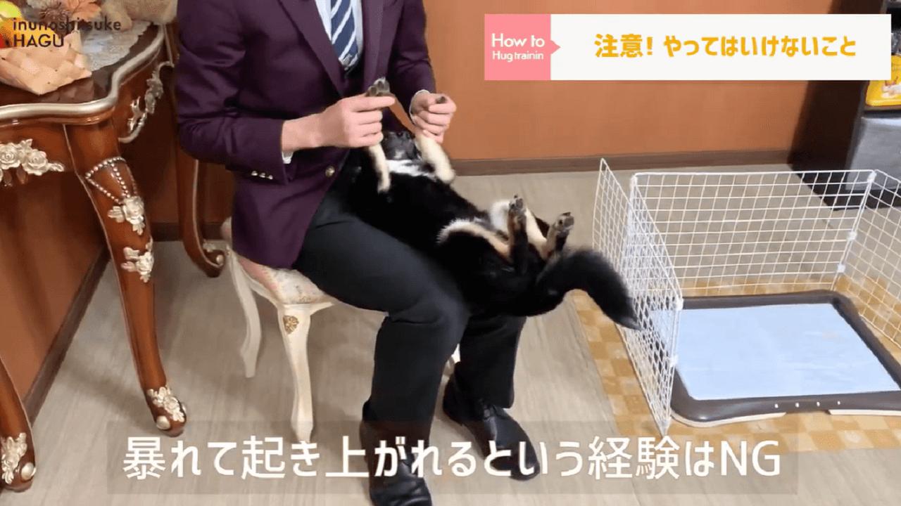 東京都文京区の犬しつけ教室でやってはいけないことの説明