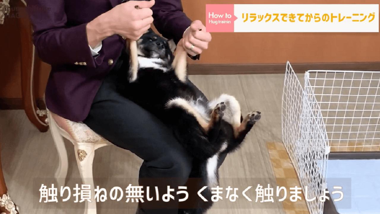 東京都文京区の犬のしつけ教室で犬を触っている