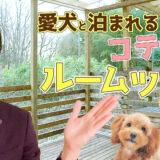 【ルームツアー】那須の大自然で愛犬と泊まれるコテージを紹介!【格安】ドッグトレーナーオーナーのコテージで安心!