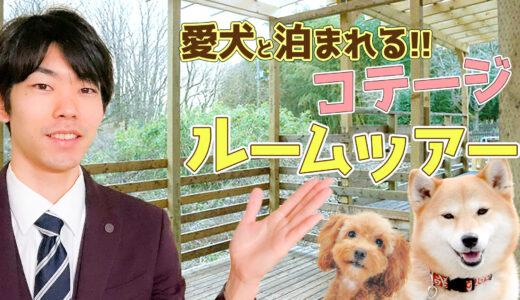 【ドッグトレーナーオーナー】那須の大自然で愛犬と泊まれるコテージを紹介!