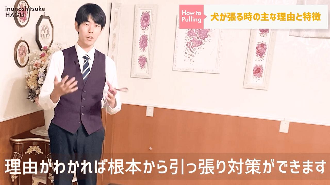 東京都文京区の犬のしつけ教室で犬の引っ張りの対策を説明しているドッグトレーナー