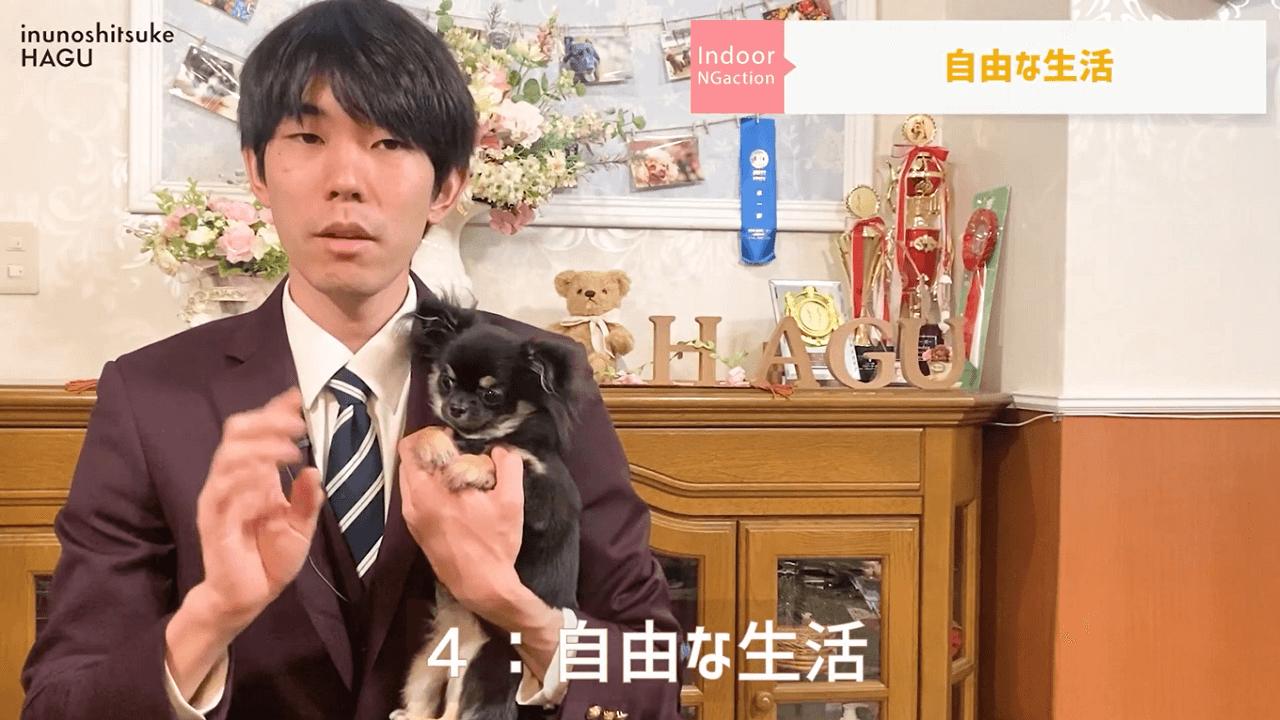 東京都文京区の犬のしつけ教室で説明をしているドッグトレーナー