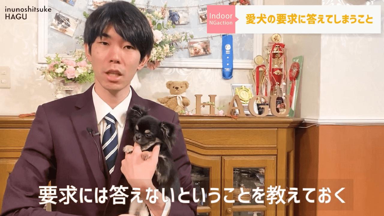 東京都文京区の犬のしつけハグで犬を抱っこしている