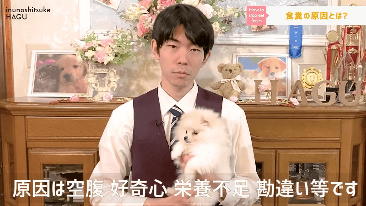 文京区の犬のしつけ教室で食糞の原因の説明をするドッグトレーナーと犬