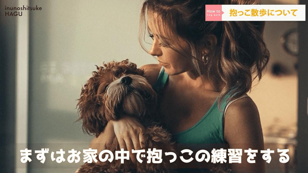 女性が犬を抱っこしている