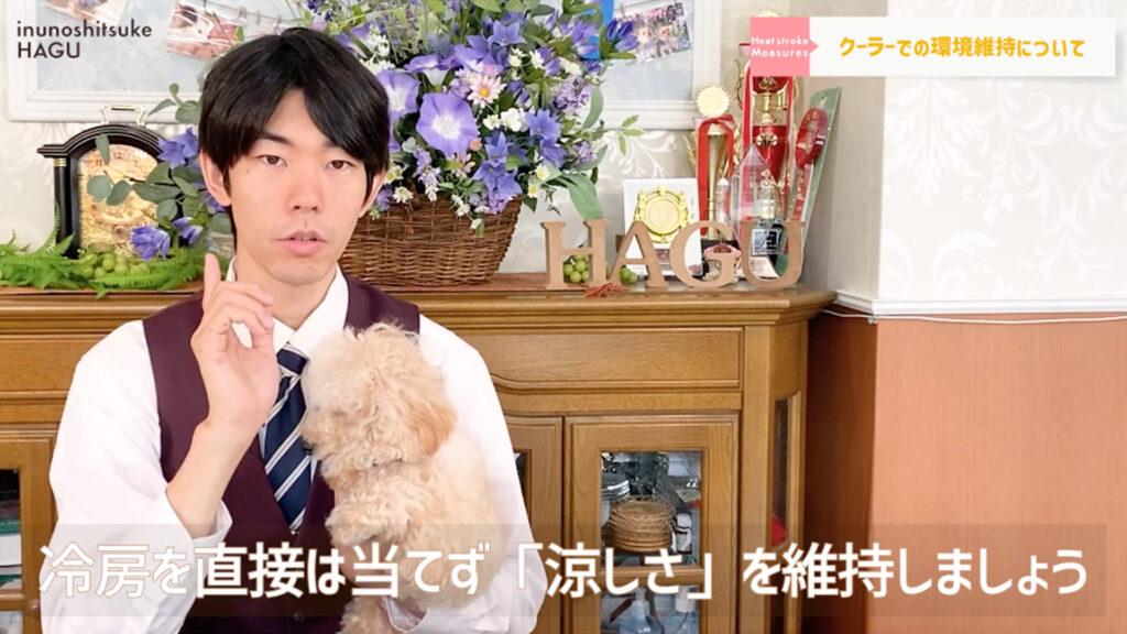 【犬の熱中症対策】愛犬を守れるのはあなただけ!ワンちゃんを熱中症にしない正しい方法教えます!【サマーカット】