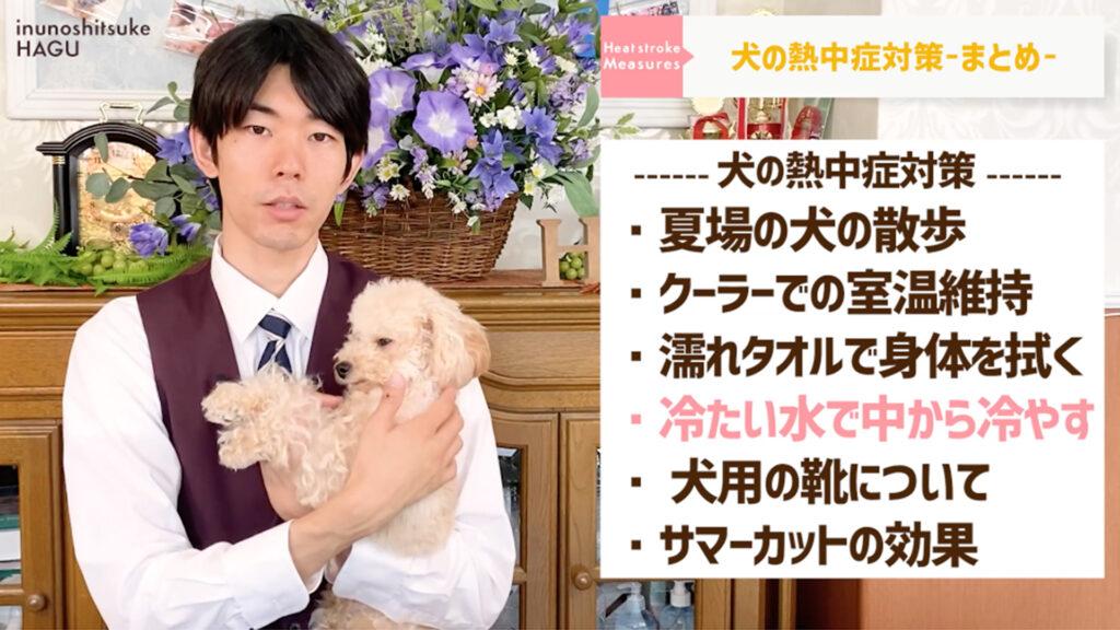 【犬の熱中症対策】愛犬を守れるのはあなただけ!ワンちゃんを熱中症にしない正しい方法教えます!【まとめ】