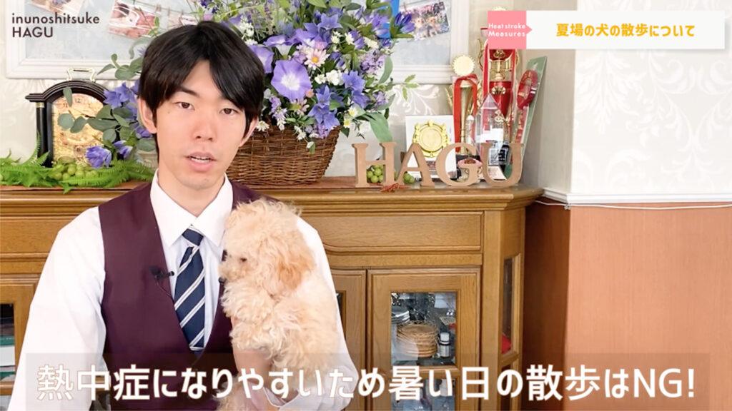 【犬の熱中症対策】愛犬を守れるのはあなただけ!ワンちゃんを熱中症にしない正しい方法教えます!【ドッグトレーナー解説シーン】