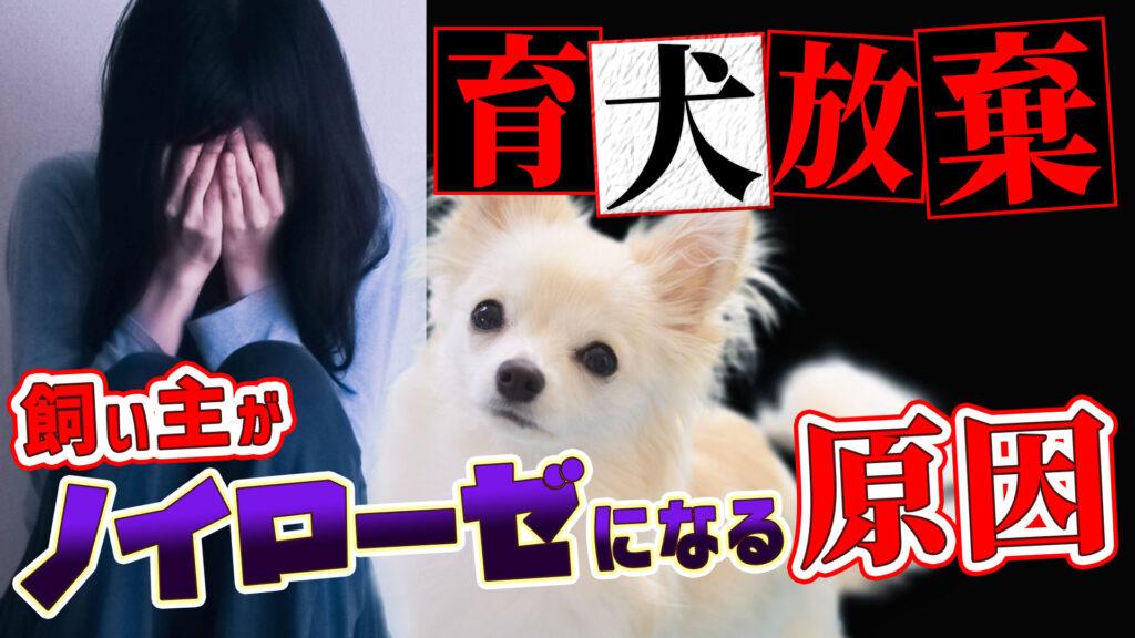 【育てるのをあきらめないで】愛犬を手放す原因につながる飼い主の「ノイローゼ」その理由と解決法について語ります!【飼育放棄】